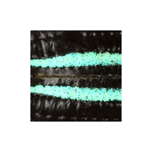 Curcullionidae